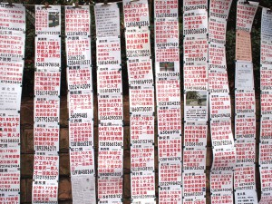 Parents post CVs for their children in hopes of finding a suitable spouse. (Photo: Xie Yifan)